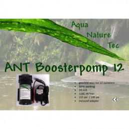 ANT Booster Pomp 12