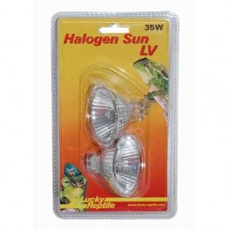 Lucky Reptile Halogen Sun LV 50 W - Double Pack
