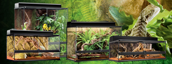 natural_terrarium_large.jpg